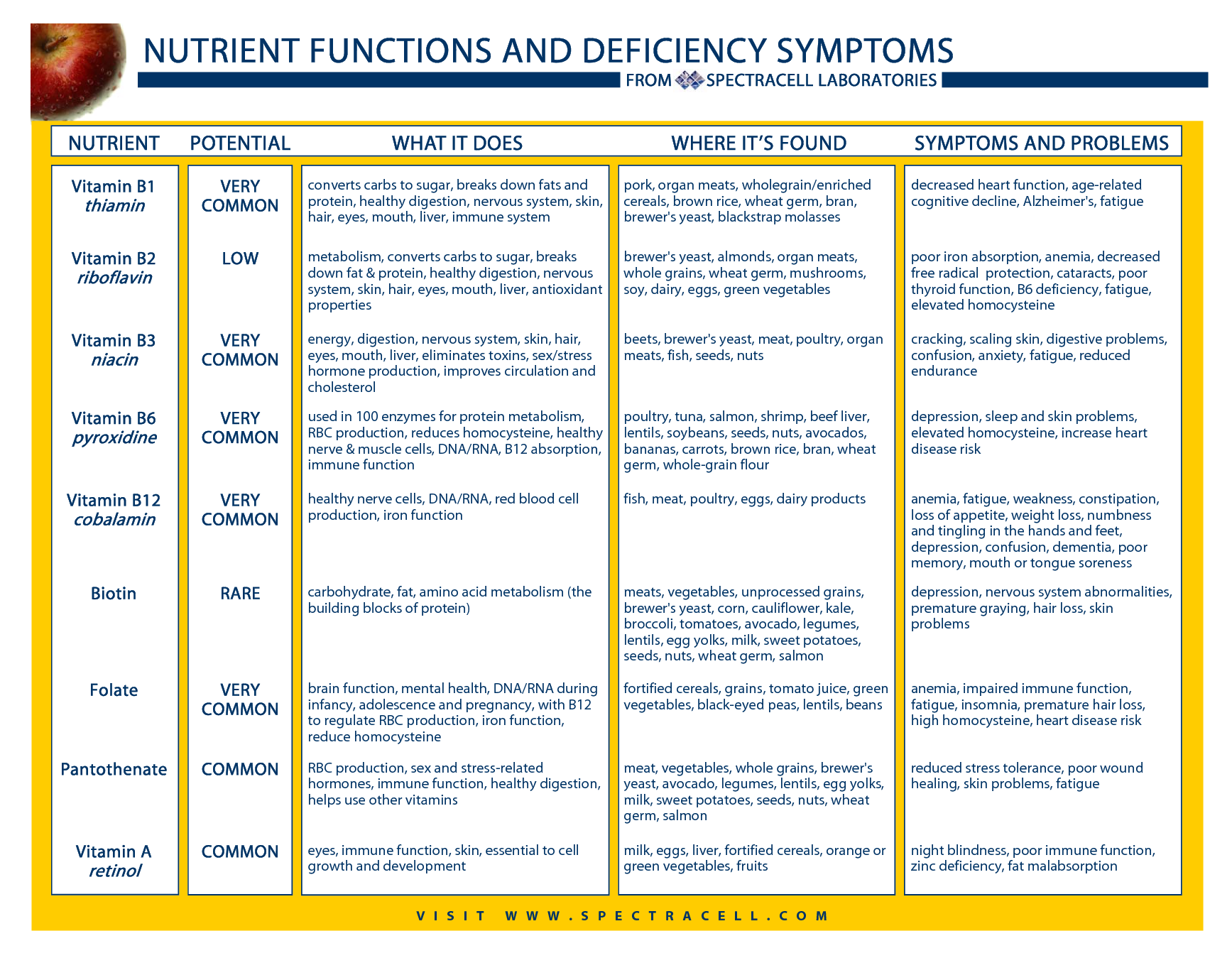 vitamin deficiency symptoms chart: Vitamins minerals oh my living too large
